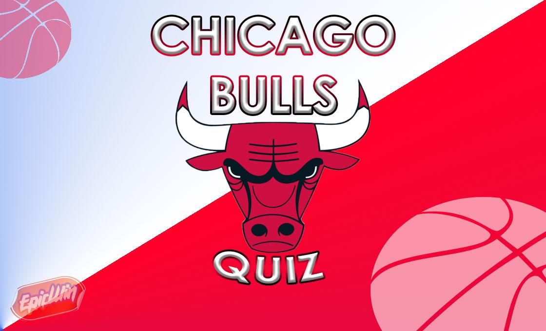 chicago bulls quiz banner