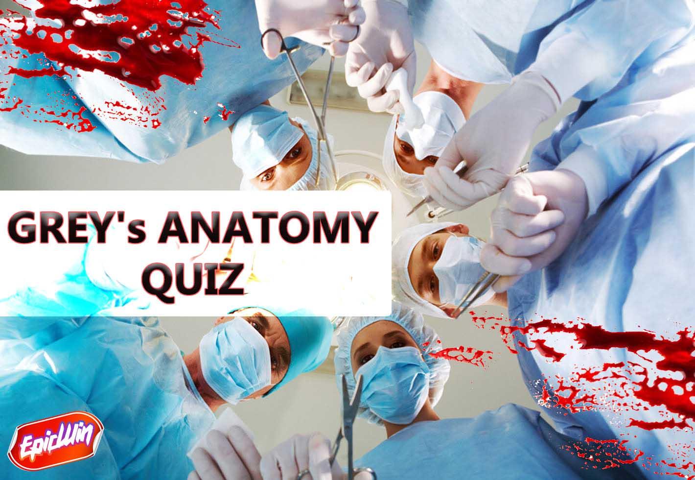 greys anatomy quiz